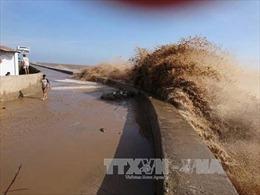 Tìm giải pháp khắc phục sạt lở kè đê biển Bạc Liêu