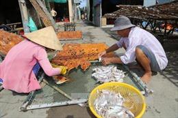Gò Công Đông phát huy tiềm năng kinh tế biển