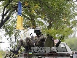 Nhóm Tiếp xúc về Ukraine nhất trí rút vũ khí bị cấm theo thỏa thuận Minsk