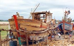 Hỗ trợ trên 7,5 tỷ đồng cho tàu dịch vụ hậu cần nghề cá