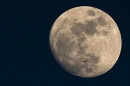 Space X chọn 2 công dân may mắn du hành Mặt Trăng năm 2018