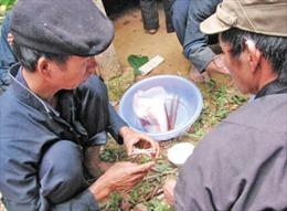 Cúng rừng – nghi lễ độc đáo của người Mông ở Lào Cai