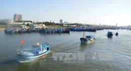 Đà Nẵng hỗ trợ ngư dân vươn khơi, bám biển