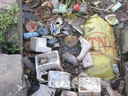 Xác động vật vứt bừa bãi xuống kênh Cây Me, Hậu Giang