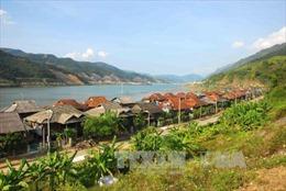 Đô thị Mường Lay giữ xanh lòng hồ thủy điện