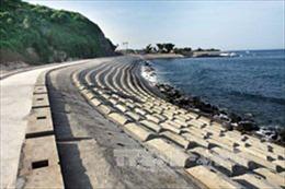 Sắp mở tuyến du lịch ra đảo Cồn Cỏ, Quảng Trị