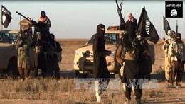 IS có thể chỉ đạo 'sói đơn độc' từ xa