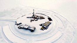 Xuất hiện 'gáo nước lạnh' mới với giá dầu thế giới