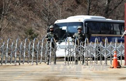 Đánh giá tác động môi trường, Hàn Quốc đẩy nhanh triển khai THAAD