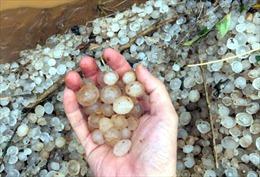 Mưa đá hạt to bằng ngón tay tiếp tục trút xuống Điện Biên