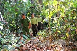 Tây Ninh tăng cường công tác phòng chống cháy rừng