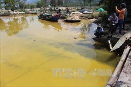 Làm rõ nguyên nhân nước biển ở Lăng Cô chuyển sang màu vàng