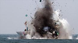 Indonesia đánh chìm thêm nhiều tàu nước ngoài đánh bắt cá trái phép