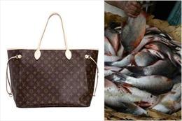 Hài hước lý do bà cụ dùng túi hiệu Louis Vuitton đựng cá