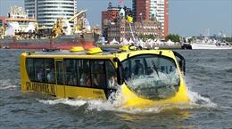 Trước 10/4, bàn giao mặt bằng xây dựng hai tuyến buýt sông tại TP Hồ Chí Minh