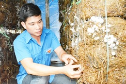 Đẩy mạnh tái cơ cấu nông nghiệp Tây Nguyên