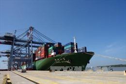 Bà Rịa - Vũng Tàu có thêm 1 cảng tiếp nhận tàu container 160.000 tấn