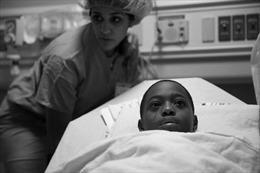 Pulitzer 2017 vinh danh tác phẩm bảo vệ người thiểu số ở New York