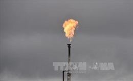 Giá dầu thế giới tiếp tục tăng do căng thẳng ở Trung Đông