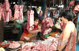 Vĩnh Phúc: Giá lợn thịt liên tục giảm, người nuôi 'méo mặt'