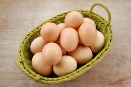 Bảo quản trứng gia cầm không đúng cách sẽ khiến vi khuẩn xâm nhập