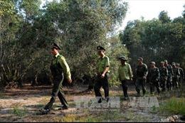 Đồng Tháp cảnh báo nguy cơ cháy rừng đang ở mức nguy hiểm
