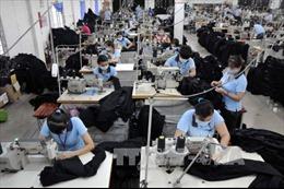 TP Hồ Chí Minh với mục tiêu 500.000 doanh nghiệp - Bài 2: Khuyến khích chuyển đổi