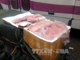 Đưa một container nầm gia súc lậu vào Nam tiêu thụ, chủ hàng bị phạt 70 triệu đồng