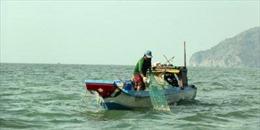 Giám sát việc khai thác, nuôi trồng, chế biến hải sản