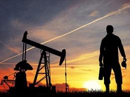 Sản lượng dầu thô Mỹ tăng, OPEC gặp khó