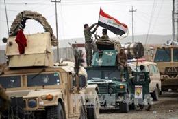 Iraq, Syria giải phóng thêm một số khu vực từ tay IS