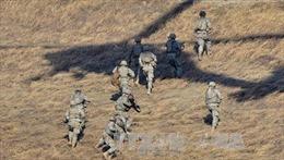 Đặc nhiệm Mỹ thiệt mạng trong chiến dịch ở Somalia