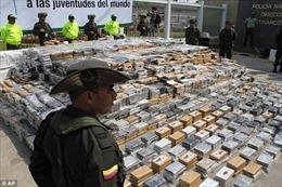 Colombia thu giữ 1 tấn cocain đang trên đường tới châu Âu