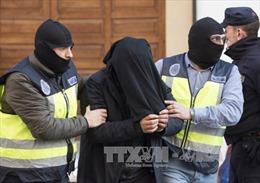 Maroc, Tây Ban Nha phối hợp bắt giữ một nhóm tuyển mộ thành viên cho IS