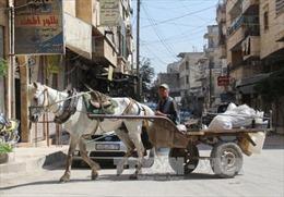 """Mỹ: Thỏa thuận về vùng an toàn tại Syria """"chưa rõ ràng"""""""
