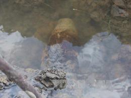 Bạc Liêu: Cuốc đất phát hiện quả đạn pháo chưa nổ