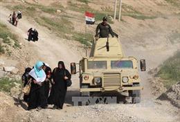 Iraq giải phóng khu vực Harmat ở tây Mosul