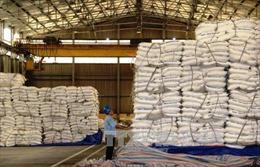 Tiếp nhận hồ sơ đề nghị miễn trừ biện pháp chống bán phá giá sản phẩm đường mía
