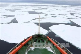 Bóng đen che phủ Hội nghị Ngoại trưởng Hội đồng Bắc Cực
