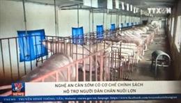 Nghệ An hỗ trợ người chăn nuôi lợn