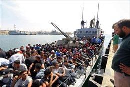 Italy giải cứu thêm gần 500 người di cư trên Địa Trung Hải