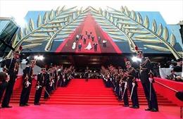 Lần đầu tiên Việt Nam chính thức dự Liên hoan Phim quốc tế Cannes