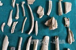 Hà Giang: Hé lộ dấu vết người tiền sử khi khai quật khảo cổ hang Pắc Tà