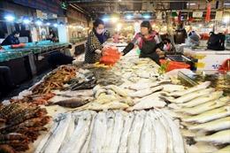 Phát hiện đường dây nhập cá bơm tạp chất từ Trung Quốc
