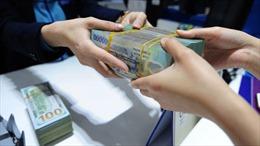 Huy động và cho vay vốn tại các tổ chức tín dụng ở Đồng Nai tăng mạnh