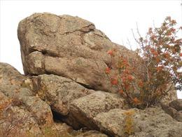 Tảng đá cổ đại bí ẩn ở Siberia có thể làm thay đổi hiểu biết về cách nhân loại hình thành