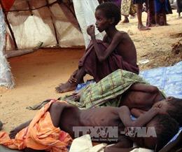 Châu Phi với thách thức bảo đảm an ninh lương thực