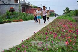 Quy hoạch cảnh quan nông thôn, kiến tạo những không gian đáng sống