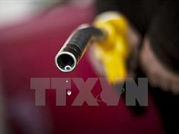 Giá dầu giảm trước khả năng Mỹ bán một nửa lượng dầu dự trữ