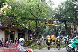 Hà Nội xây dựng phương án ứng phó mùa mưa bão 2019